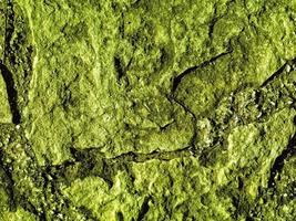 trama di pietra verde foto