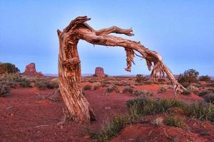 splendido paesaggio della Monument Valley foto
