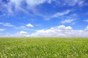 bellissimo campo di erba verde e cielo nuvoloso blu foto