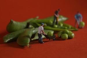 operai edili in immagini alimentari concettuali con piselli a scatto foto
