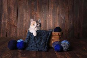 gattino in un cesto di filati per maglieria su sfondo di legno foto