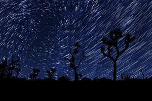 Tracce stellari a lunga esposizione nel parco nazionale di Joshua Tree foto