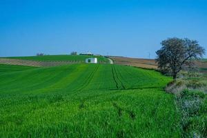 terreno agricolo rurale con capannone bianco foto