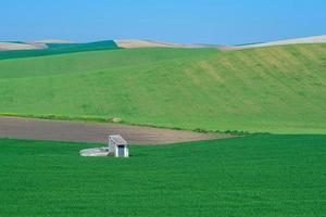 terreno agricolo collinare rurale con capannone bianco foto