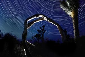tracce stellari nel parco nazionale di joshua tree foto