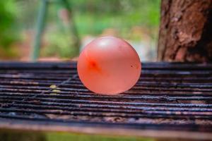 palloncino pieno d'acqua posto su una griglia calda foto