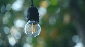 piccole luci con lo sfondo di alberi bokeh foto