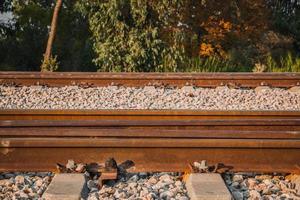 binario ferroviario in una zona rurale nel pomeriggio foto