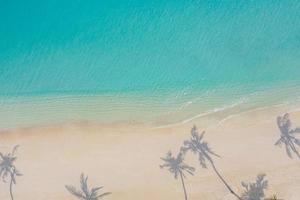 scenario del paradiso aereo. paesaggio aereo tropicale, paesaggio marino con foglie di palma ombre mare incredibile e spiaggia lagunare, natura tropicale. banner di destinazione turistica esotica, vacanze estive foto