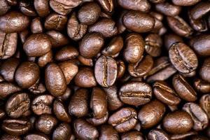 chicchi di caffè tostati. foto