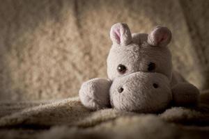 ippopotamo di peluche per bambini foto
