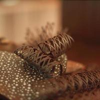 stretta di caramelle al cioccolato foto