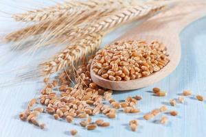 chicchi di grano sullo sfondo in legno foto