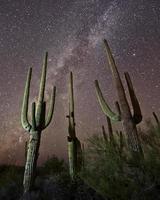 saguari e via lattea foto