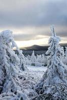 inizio dell'inverno foto