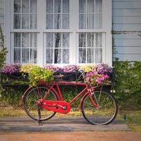 bicicletta vintage rossa foto
