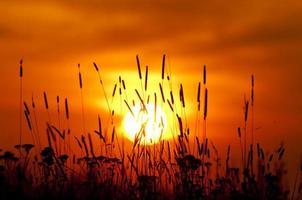 tramonto arancione