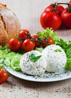 mozzarella, verdure e pomodori foto