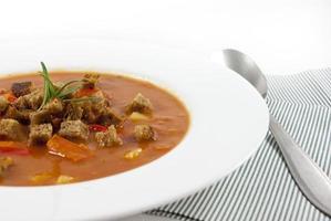 zuppa di pomodoro su sfondo bianco foto