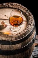 bicchiere di buon cognac nel seminterrato della distilleria