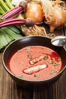 zuppa di barbabietola con uovo e verdure in una ciotola foto