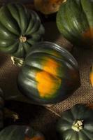 zucca di ghianda verde biologica cruda foto