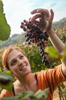 giovane donna raccolta uva foto