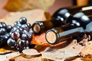 bottiglia con vino foto