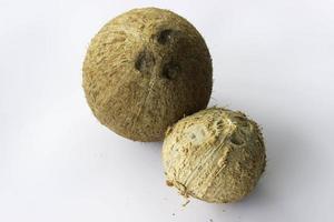 frutto di noci di cocco foto