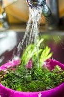 lavare il prezzemolo, la doccia all'aneto, la cucina, i piatti, lavare le verdure foto