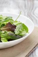mesclun mescolare l'insalata in una ciotola bianca foto