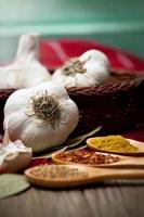 erbe e aglio fresco foto