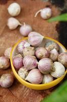 aglio biologico fresco foto