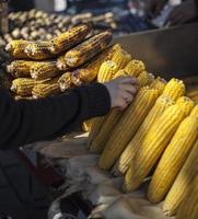 venditore di mais alla griglia venditore ambulante di Istanbul foto