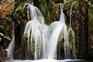 fiume Grza foto