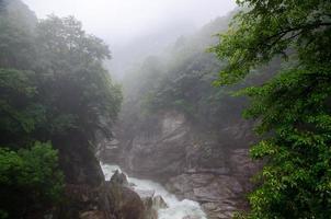 fiume nebbioso foto