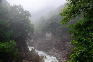 fiume nebbioso