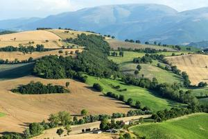 paesaggio estivo a marches (italia)