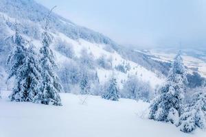 paesaggio invernale foto