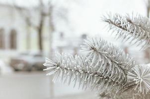 città invernale foto