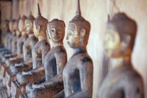 fila di statua di buddha. foto