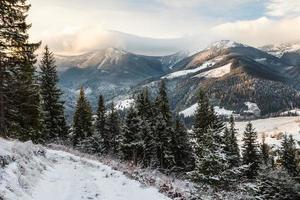 bellissimo paesaggio invernale in montagna foto