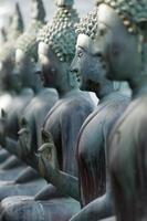fila di statue di buddha foto