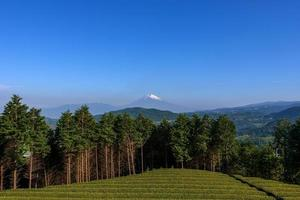 bellissimo mt. fuji dalla prefettura di shizuoka. foto