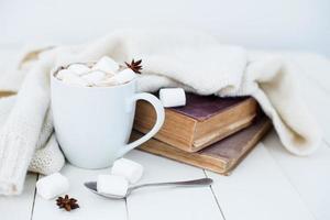 accogliente sfondo casa invernale foto
