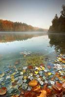 lago d'autunno. foto