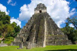 rovine tikal e piramidi