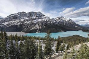 lago peyto panoramico