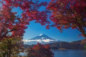 mt. fuji in autunno foto
