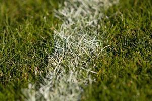 primo piano del tappeto erboso foto